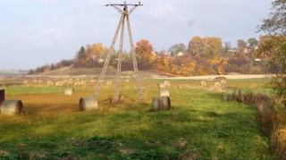 Fot. D. Kordyś-10