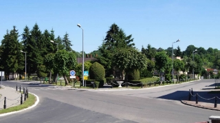 Fot. D. Kordyś-13