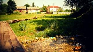 Fot. D. Kordyś-15