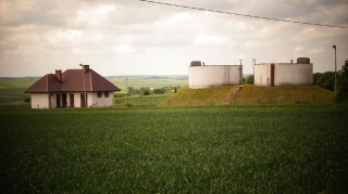 Fot. D. Kordyś-17